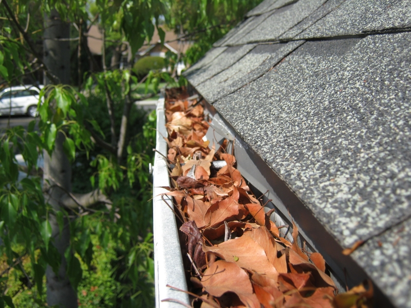 Rain Gutter Cleaners in Saint Louis, MO 63199