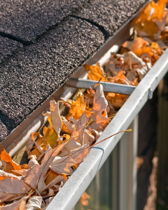 Rain Gutter Cleaners in Kansas City, MO 64155