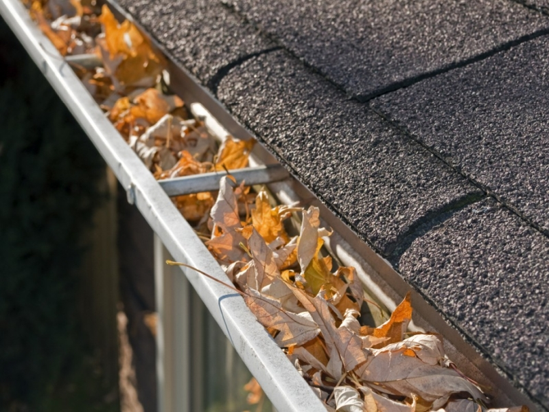 Rain Gutter Cleaners in Vanzant, MO 65768