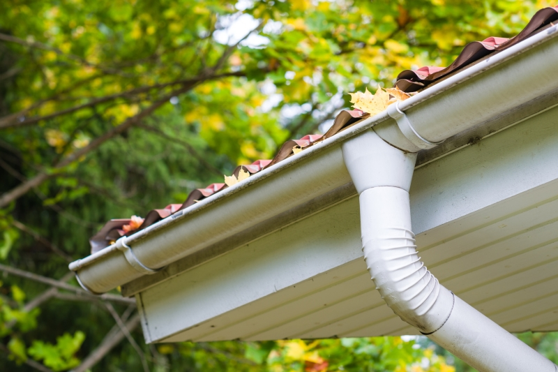Rain Gutter Cleaners in Kansas City, MO 64168