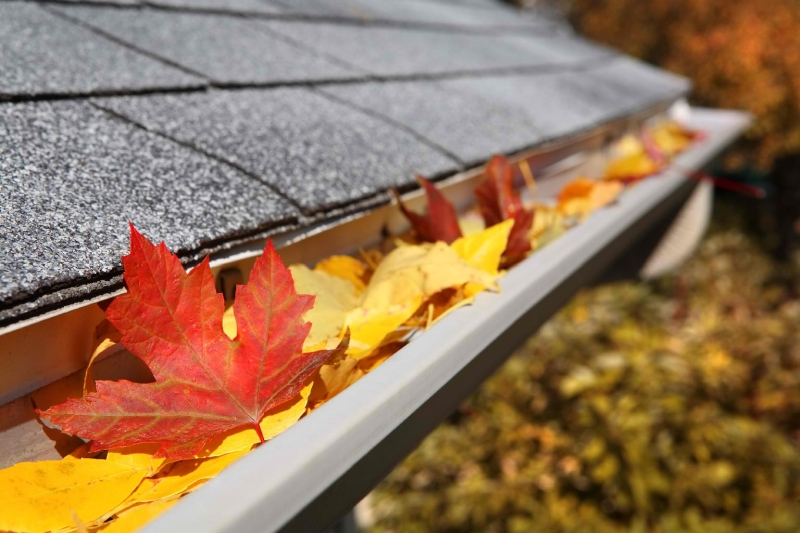 Rain Gutter Cleaners in Lees Summit, MO 64063