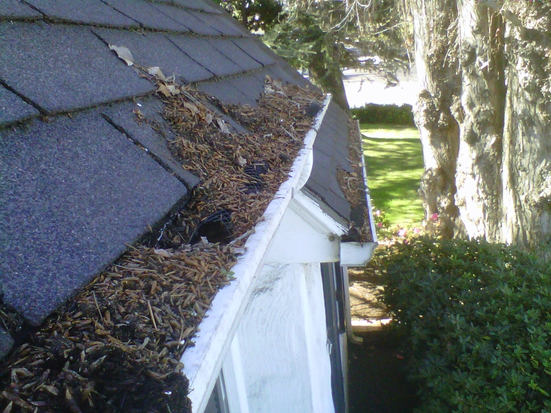 Rain Gutter repair in Shannon, GA 30172