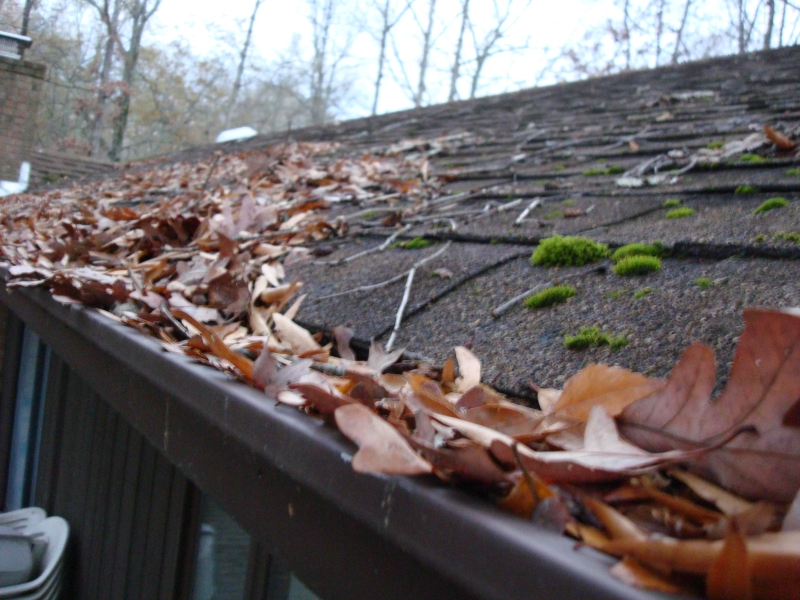 Rain Gutter Cleaners in Golden City, MO 64748