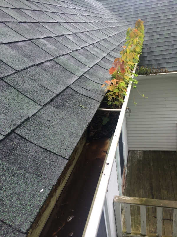 Rain Gutter Cleaners in Post Falls, ID 83877