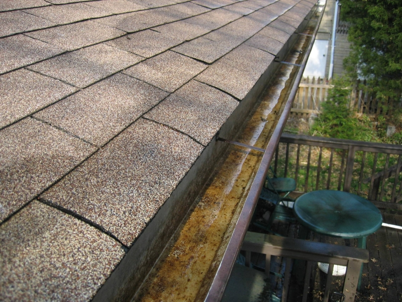 Rain Gutter Cleaners in Springfield, MO 65809