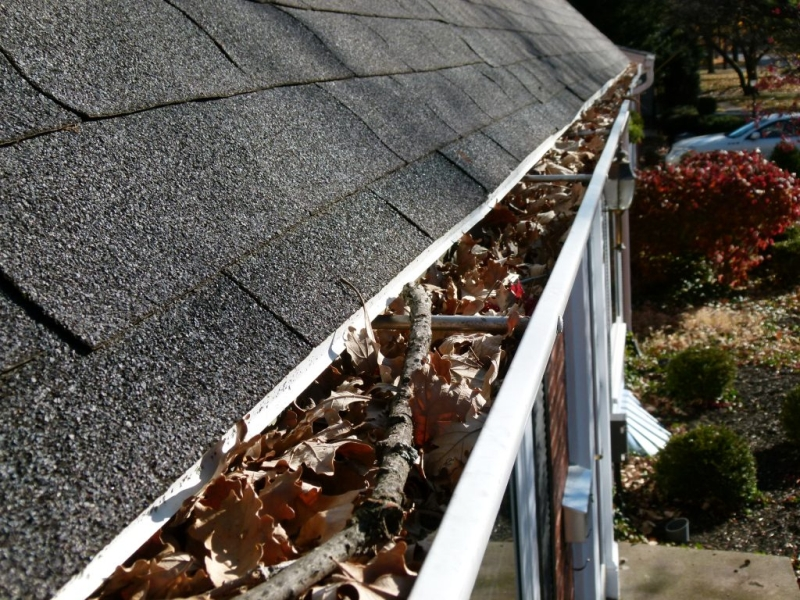 Rain Gutter Cleaners in Kansas City, MO 64158