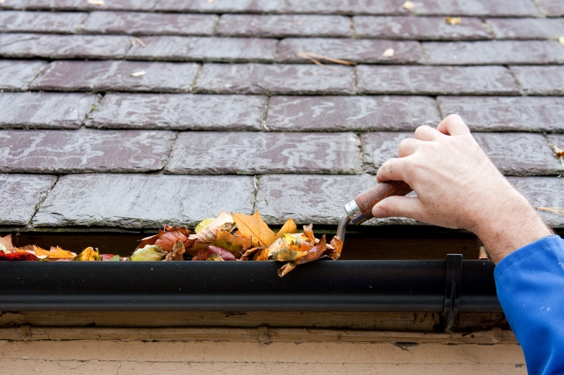 Rain Gutter Cleaners in Smithton, MO 65350