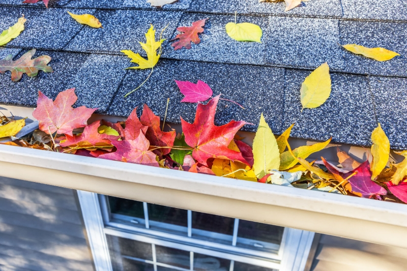 Rain Gutter Cleaners in Saint Louis, MO 63158