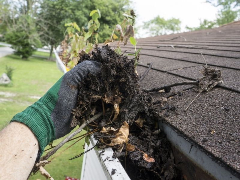 Rain Gutter Cleaners in Hornersville, MO 63855