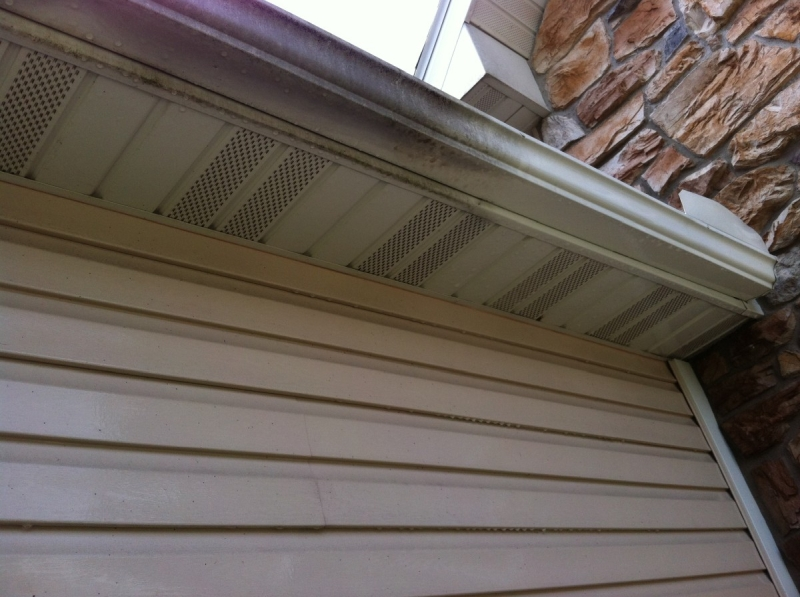 Rain Gutter Cleaners in Richards, MO 64778