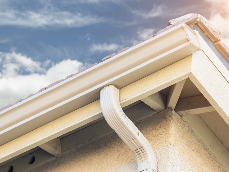 Rain Gutter Cleaners in Racine, MO 64858