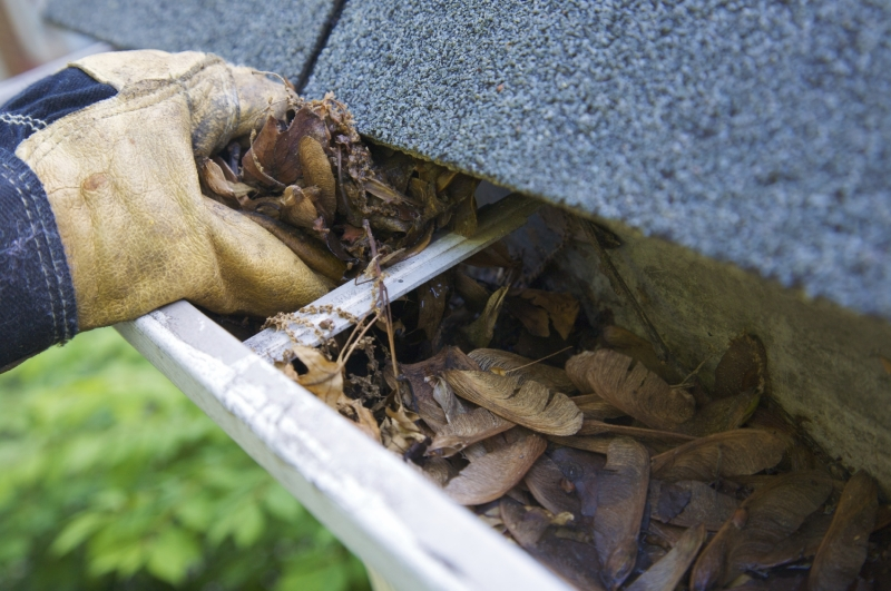 Rain Gutter Cleaners in Saint Louis, MO 63182