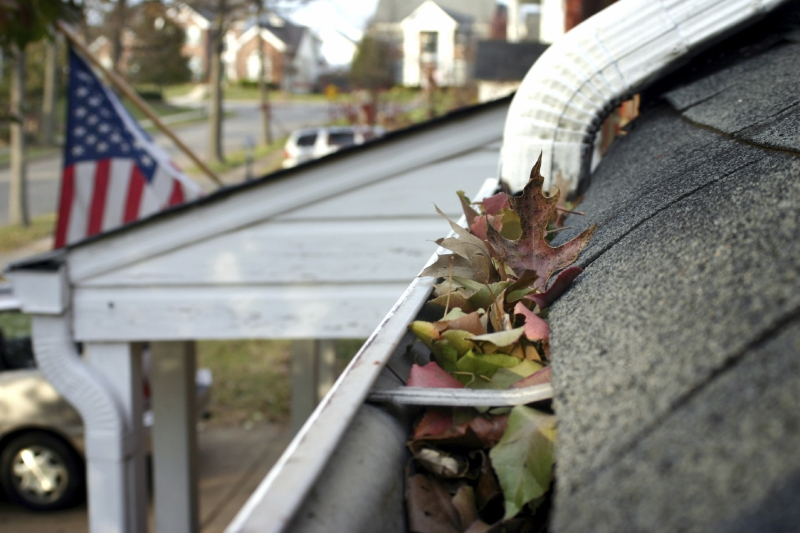 Rain Gutter Cleaners in Rutledge, MO 63563