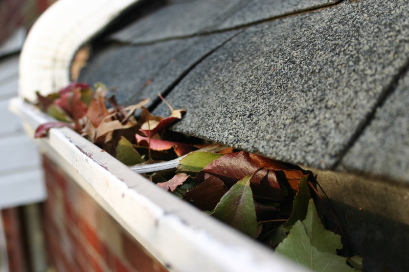Rain Gutter repair in Warm Springs, GA 31830