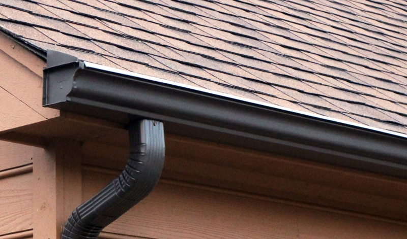 Rain Gutter Cleaners in Leonard, MO 63451