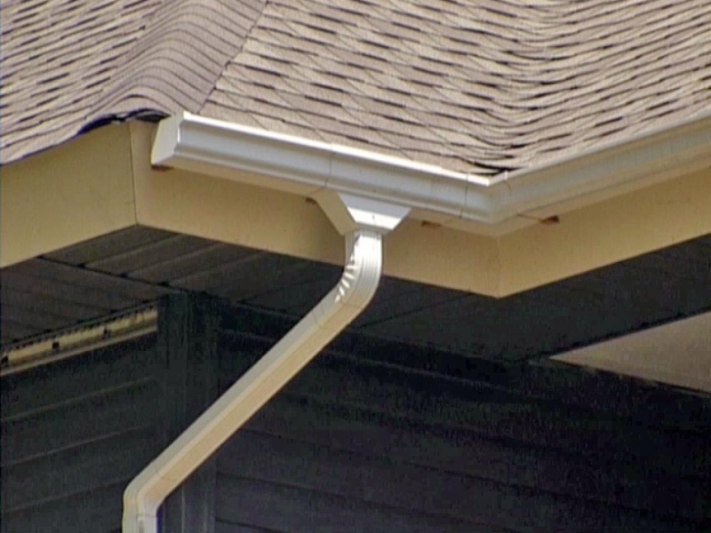 Rain Gutter Cleaners in Wooldridge, MO 65287