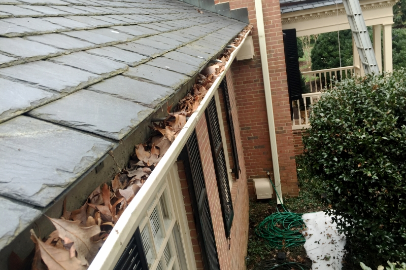 Rain Gutter Cleaners in Gorin, MO 63543