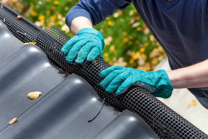 Rain Gutter Cleaners in Sparta, MO 65753